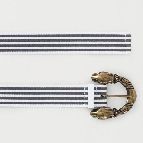 Striped belt : Belts color Grey