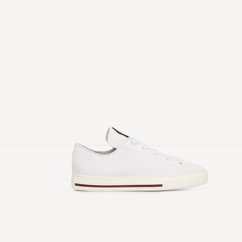 Low canvas trainers with crest : Accessories color White